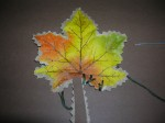 6. Whip stich around the leaf with contrasting thread.  Use short pieces of thread to help reduce tangles.